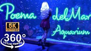 VR 360 Video 5.7 K   Poema Del Mar Aquarium   Canary Islands, Spain   Oculus Quest2 #vrgirl