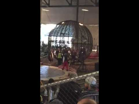 Globe of death crash 2