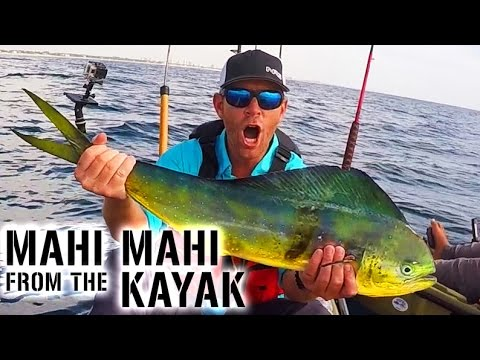 Kayak Fishing: MAHI MAHI & SAILFISH Action In Florida