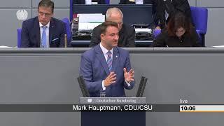 Mark hauptmann: jahresbericht zum stand ...