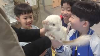 앵무새, 뱀, 나무늘보 동물친구들과 인사하기! 유미 미니 실내동물원 쥬몽 zoomong 다녀왔어요!  Say hello to your animal friends! 로미유스토리