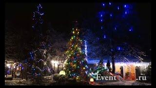 видео Светодиодные деревья - лучшие украшения праздника