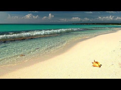 Relaxing Music with Gentle Ocean Sounds, Soothing Waves and