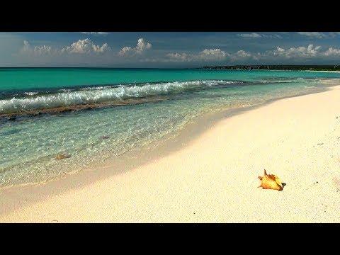 Gestrandet Strand mit Meeresrauschen und entspannende Musik, beruhigende Wellen 8 Stunden !!!