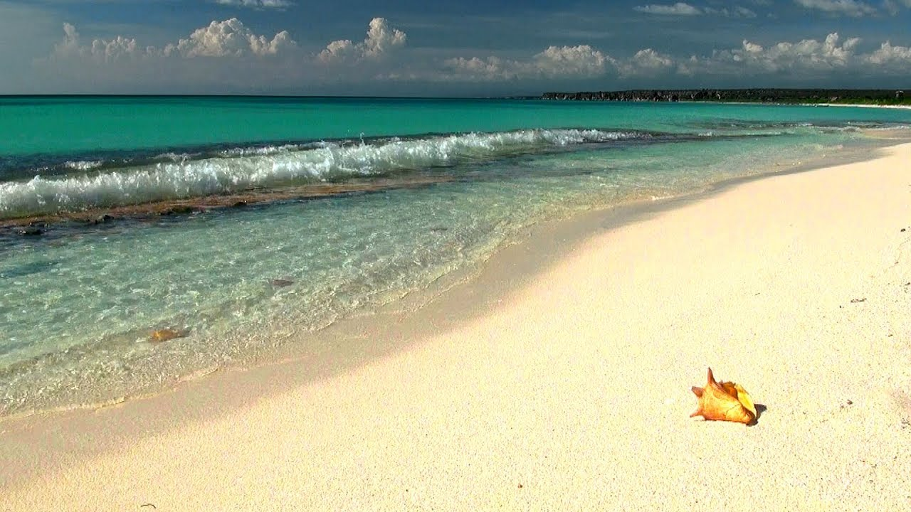 Tropical Island Beach Ambience Sound: Relaxing Music With Gentle Ocean Sounds, Soothing Waves