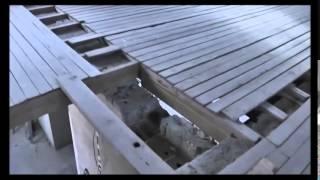 Часть 1. Как сделать лестницу своими руками.(Как самому сделать деревянную винтовую правильную лестницу из дерева в доме своими руками на второй этаж., 2014-04-27T17:39:40.000Z)