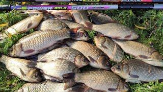 Ловля КРУПНОГО КАРАСЯ выкладывают ПОПЛАВОК Рыбалка весной 2021