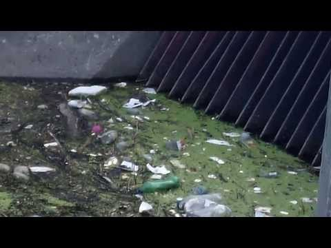 Delaware Park garbage slip