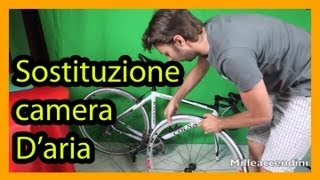 Sostituzione Camera Daria - Bici E Trucco Per Non