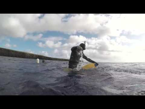 Blue Water Spearfishing Hawaii (Part 1)