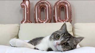【祝】もち様、登録者100万人おめでとうございます!