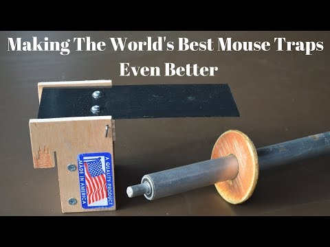 """How To Make The World's Best Mouse Traps Even Better. """"Rolling Log & Walk The Plank Mouse Traps"""""""