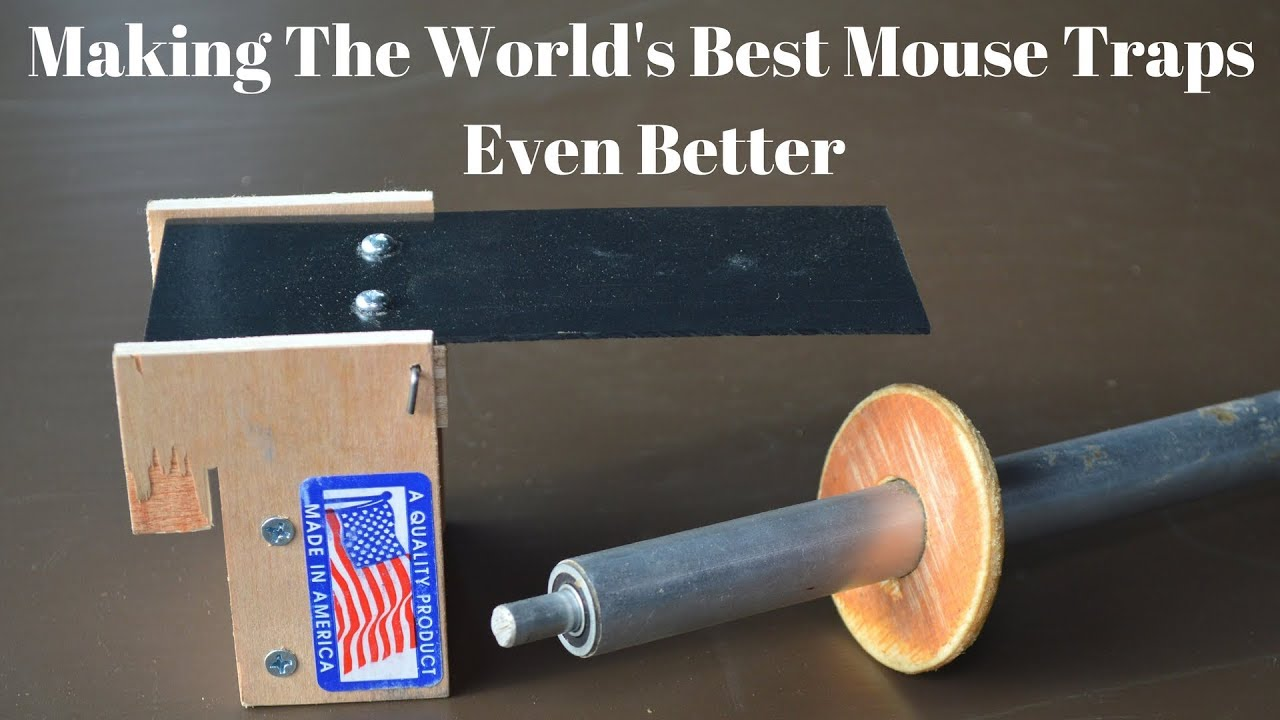 How To Make The Worlds Best Mouse Traps Even Better Rolling Log