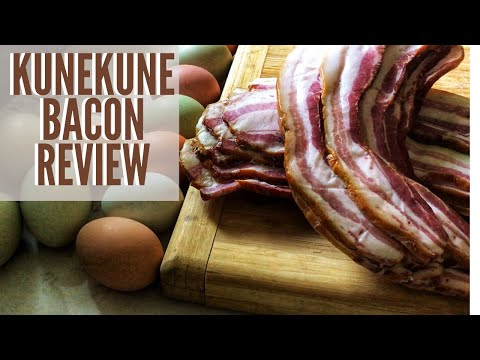 You Have Never Tasted BACON Like This!