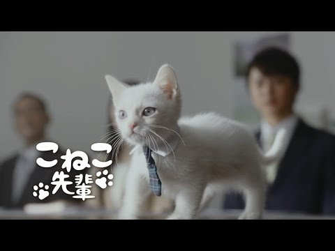 JAバンクCM 「マジシャン先輩」編