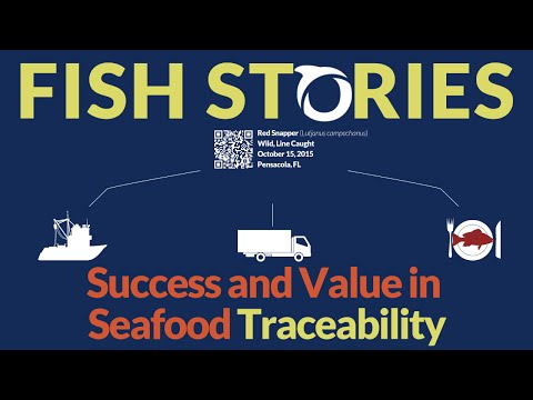 Fish Stories: Success And Value In Seafood Traceability