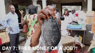 Day 7: Free Money or a Job?!