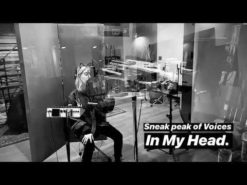 Snippet #2 Voices In My Head - Ashley Tisdale Mp3