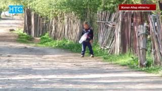 Токтогул району: компенсация 70 миллионго жогорулашы ыктымал / НТС / 23.06.16