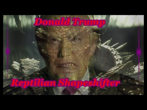 Donald Trump ~ Reptilian Hybrid