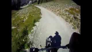 DH Mountain Biking Snowbird
