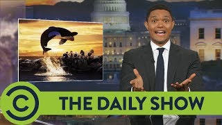 John McCain Flip-Flopped On Healthcare - The Daily Show | Comedy Central