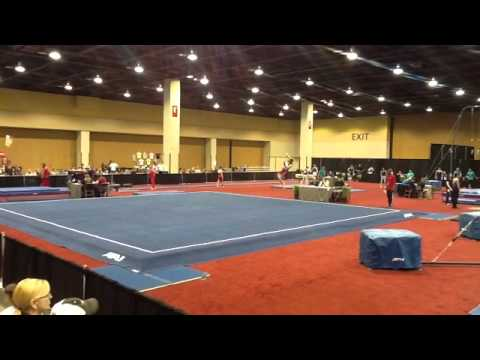region 8 gymnastics 2015 meet