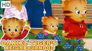 Daniel Tiger - Let's Go to the Enchanted Garden! | Videos for Kids