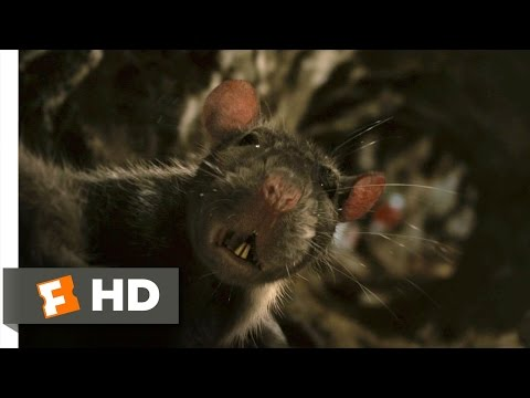 Charlotte's Web (4/10) Movie CLIP - The Yolks On Me (2006) HD