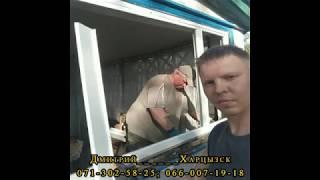 Пластиковые окна в ДНР. Установки.
