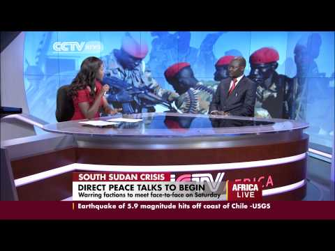 Peace Support Operations expert talks on the S.Sudan crisis