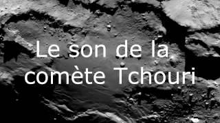 Crapaud Buffle / Comète Tchouri