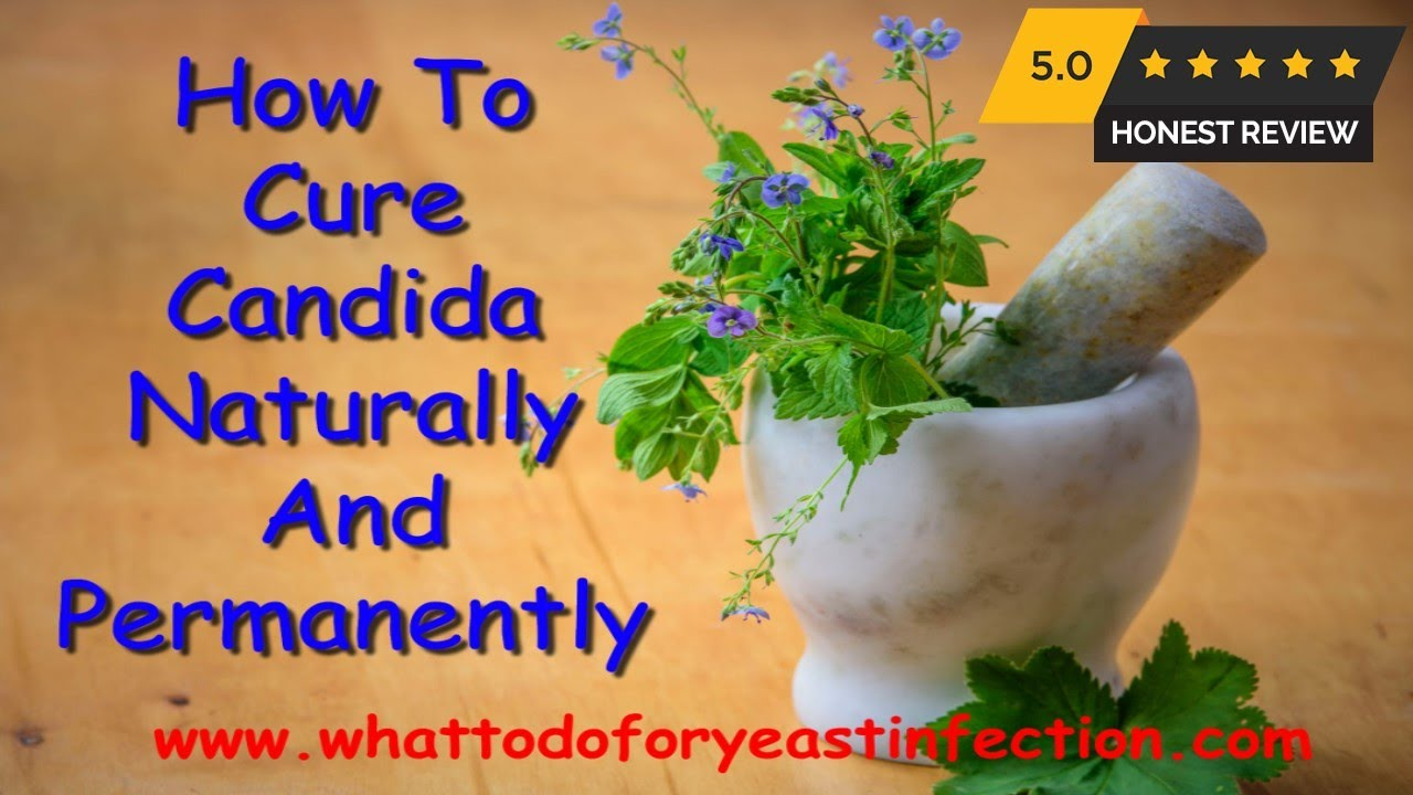 How to Cure Candida Naturally and Permanently? - How i cured my chronic  candida – after 7 years!