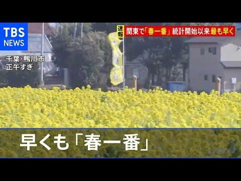 春一番が関東地方で吹いて、さくらの開花も近いぞ!