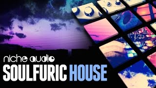 Soulfuric House Maschine Expansion Ableton Live Pack - From Niche Audio