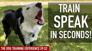 How To EASILY Train Your Dog To SPEAK in SECONDS!