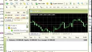 Tutorial Trading Forex 2014