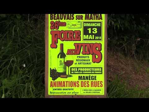 Foire Aux Vins Beauvais Sur Matha-13 MAI 2018