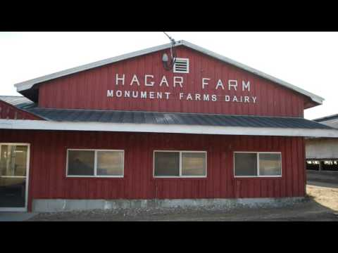A View of Monument Farms Dairy