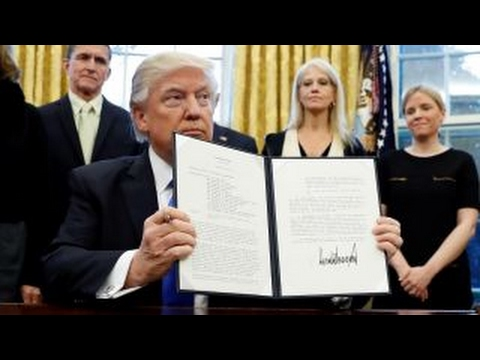 Is Trump's executive order on immigration constitutional?
