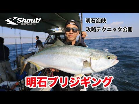 明石の魚英さんでブリジギングに行ったらあの美味しい魚が連発!