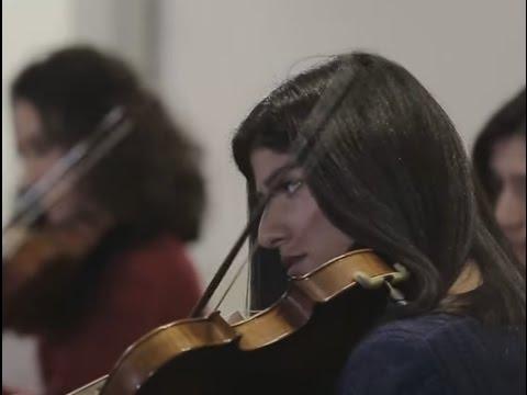 The Lesson of the Orchestra | Sistema Armenia | TEDxYerevanSalon