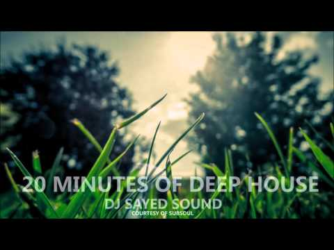 20 Minutes of Deep House [Subsoul] (Live Mix by DJ Synthful Sound using Pioneer XDJ-RX)