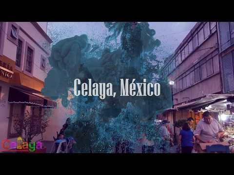 Wow Air Travel Guide Application | Celaya, México