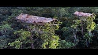vuclip Rumah Diatas Pohon ~ Jejak Petualang