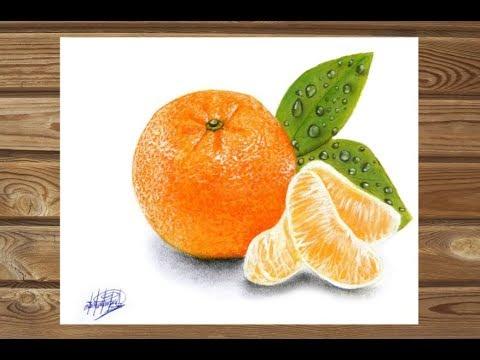 Dibujo realista de una mandarina   HD  Realistic drawing of mandarin