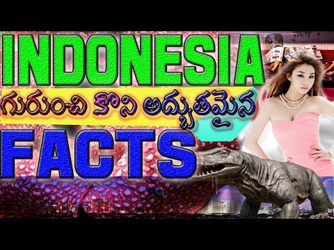 Facts about Indonesia, Interesting Facts about Indonesia in Telugu, Indonesia Facts in Telugu
