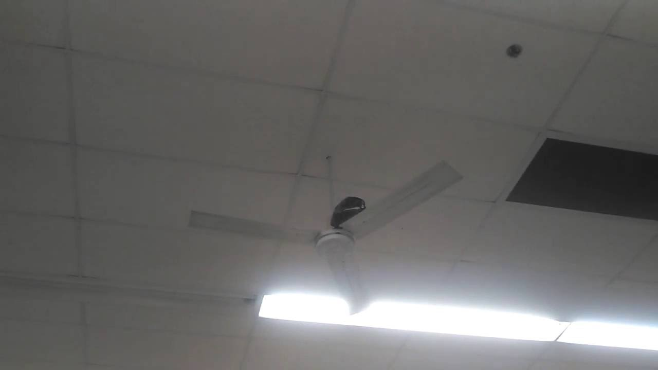 Dayton Leading Edge Industrial Commercial Ceiling Fans In