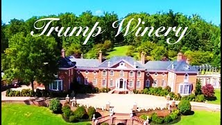 2017-08-31-03-00.EXCLUSIVE-Right-Wing-Mandela-Ben-Carson-Bill-Clinton-Endorse-Trump-Winery-In-AMAZING-Ad-TMBS