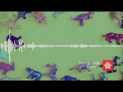 Tropical Jungle  (Free Download Background Music)